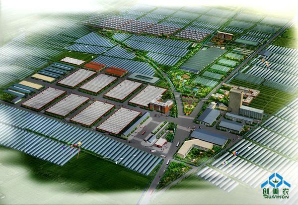 新野县规划平面图