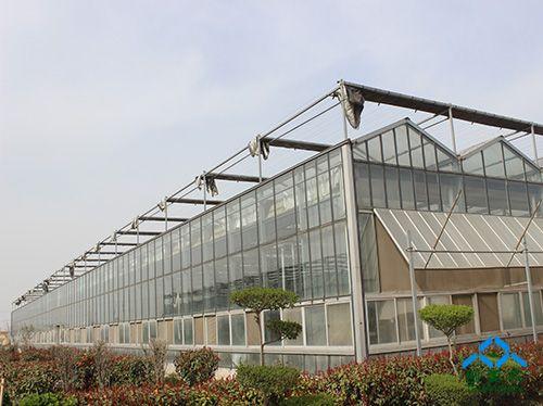 温室    采用热镀锌钢结构骨架,覆盖材料一般采用4-5mm优质浮法玻璃或