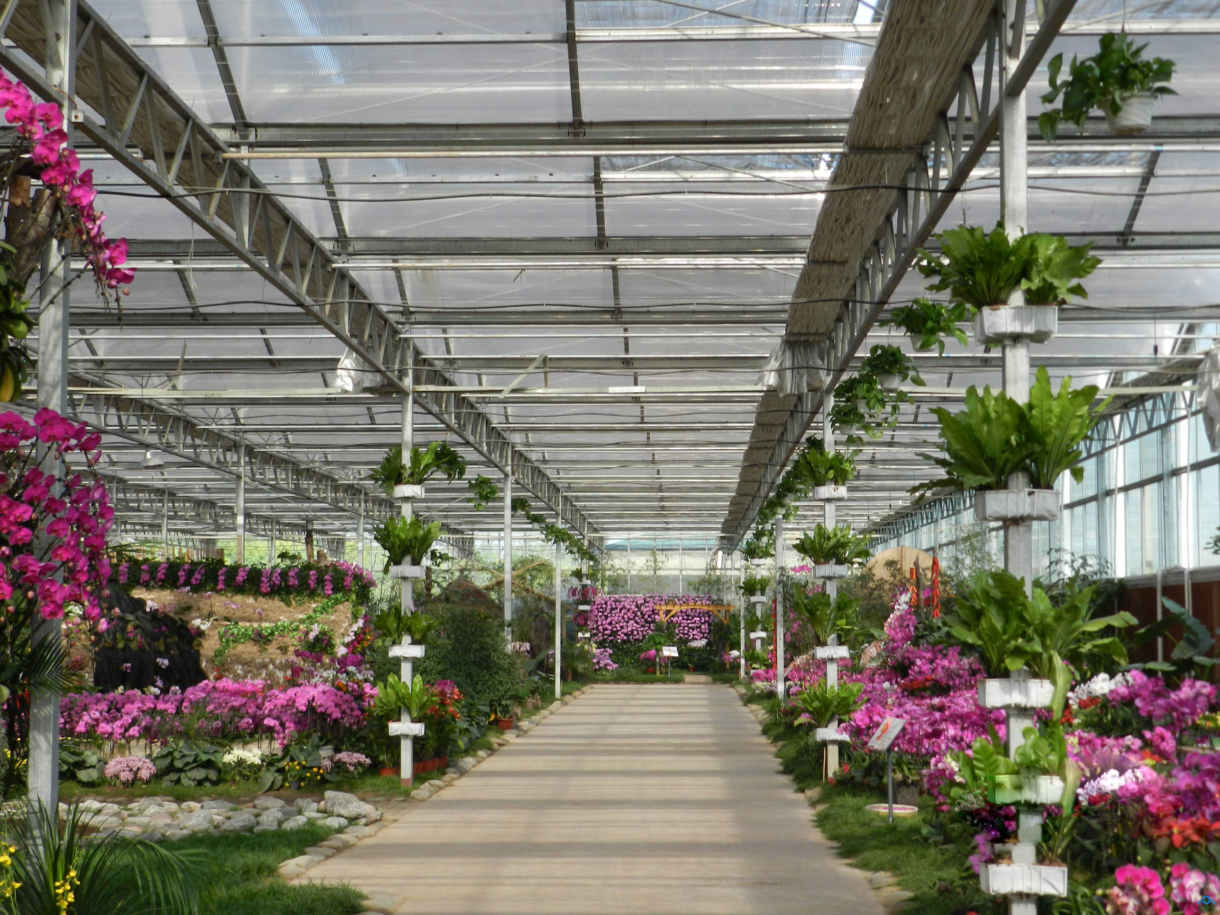 观光类的:生态温室,花卉温室;   2.种植类的:蔬菜温室,水果温室