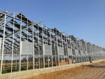 2017年新建连栋光伏温室