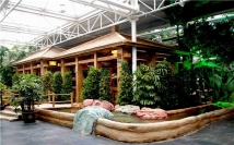 2017温室生态餐厅设计