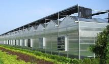 温室大棚造价及其发展趋势