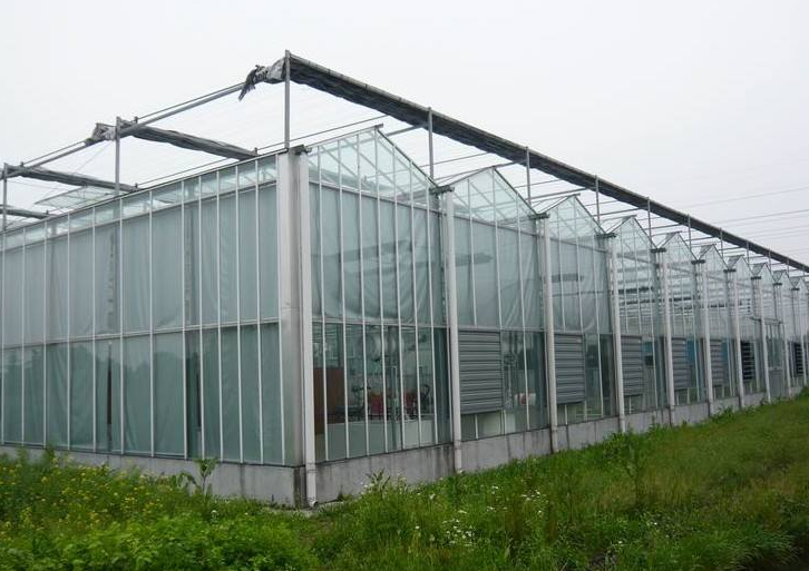 连栋玻璃温室