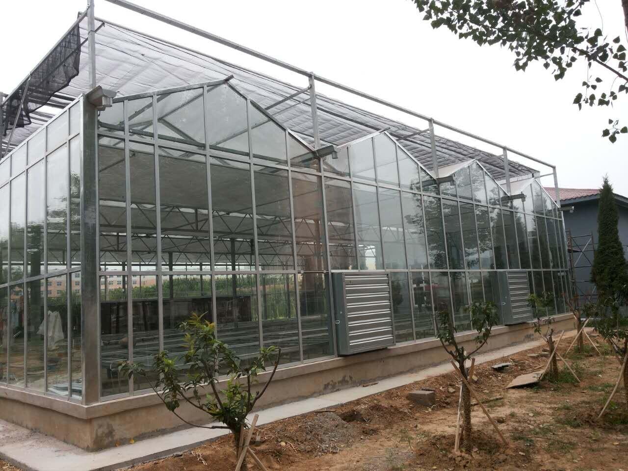 2017新型玻璃温室大棚
